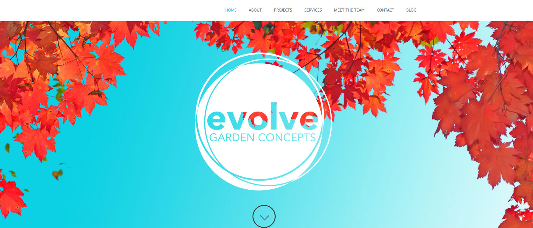 Evolve Outdoor Concepts